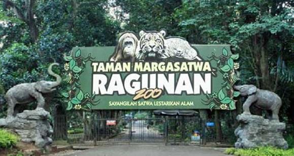 Tempat Rekreasi dan Kebun Binatang Masa PSBB Transisi Dibuka Hari Ini
