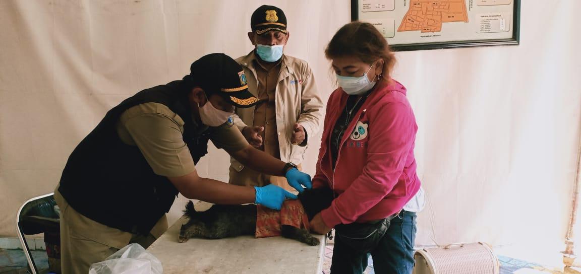 Vaksinasi Rabies di kelurahan Keagungan