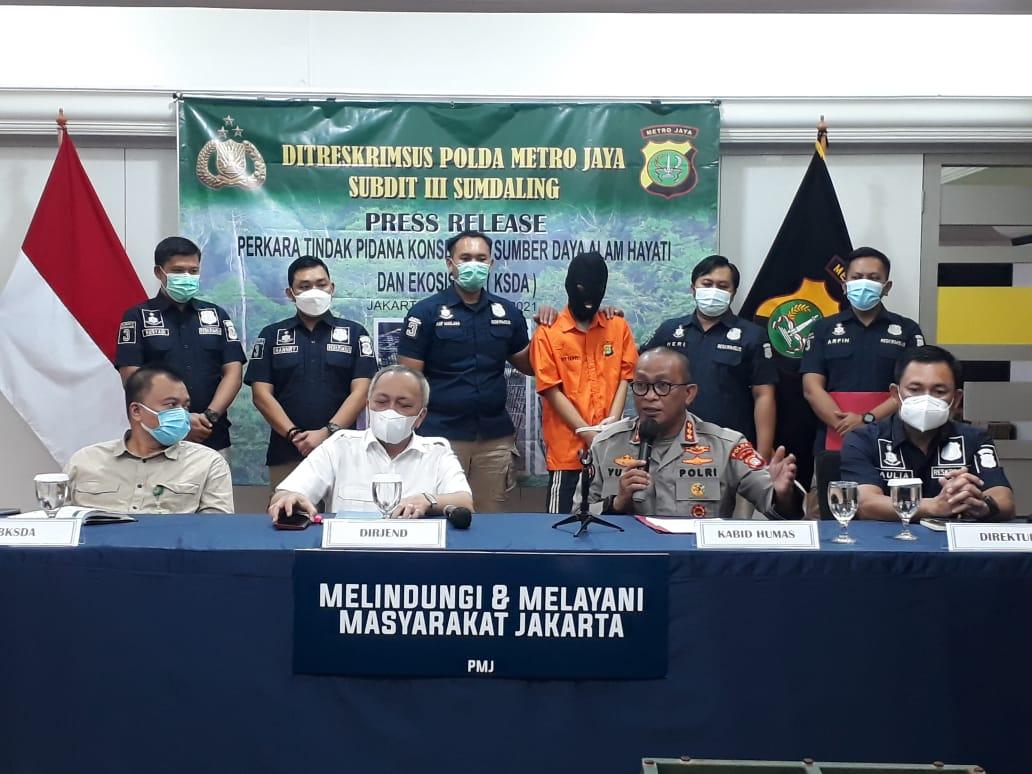Ditkrimsus Polda Metro Jaya Tangkap Penjual Satwa Langka Dilindungi