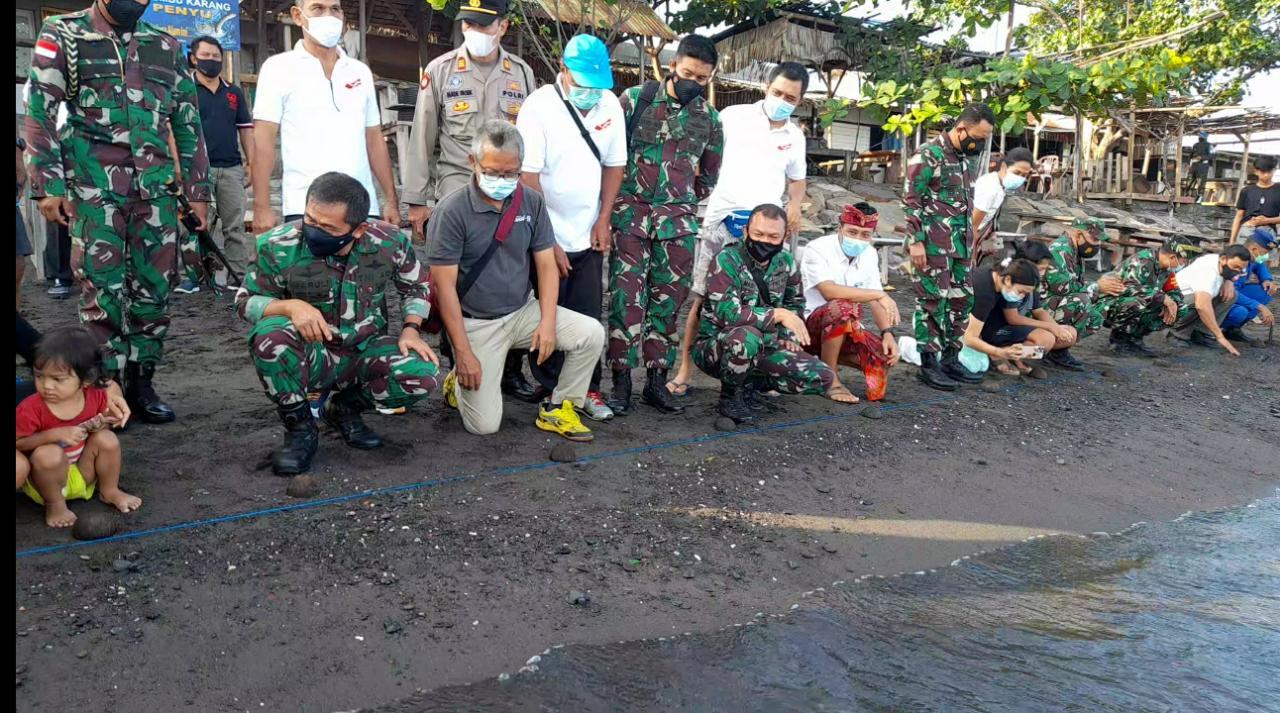 Kunjungi Markas Dandim1906/Buleleng, Pangdam IX Udayana Lepas 25 Tukik di Pantai Penimbangan